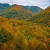 Maggie Valley - Great Smoky Mountain Region, North Carolina_41
