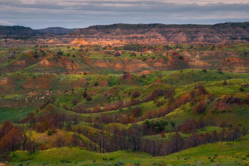 Rolling Spring Valleys Of Color - Theodore Roosevelt National Park, North Dakota