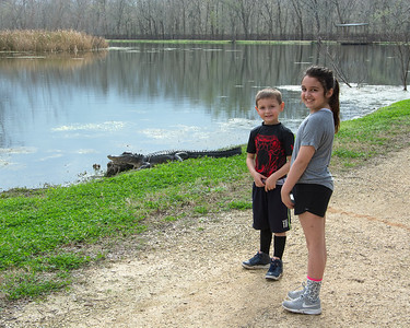 Brazos Bend State Park - February 2018