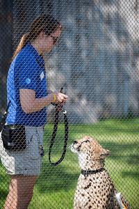 Dallas Zoo 5-30-2017
