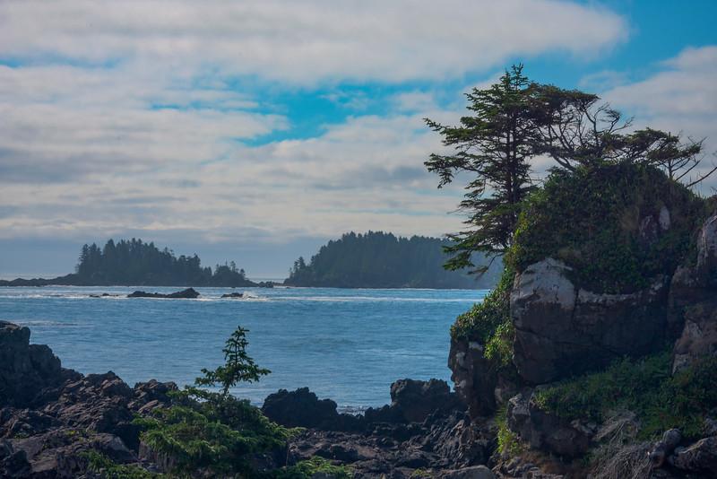 The Distant Island National Park - Wild Pacific Trail, Tofino, Vancouver Island, BC, Canada
