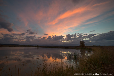 Fern Ridge Wildlife Fall Glow