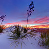 White Sands National Monument 18