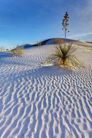 White Sands National Monument 7