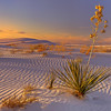 White Sands National Monument :