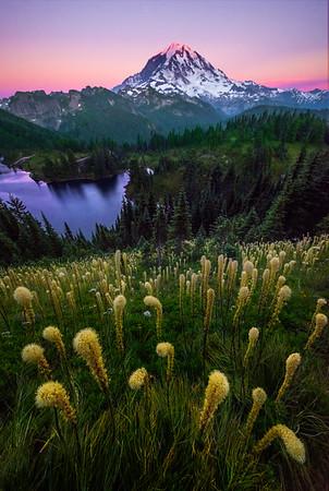 Twilight Light Over Mt Rainier And Beargrass -Tolmie Peak, Mount Rainier National Park, WA