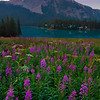Emerald Lake in Yoho National Park during the peak of summer season