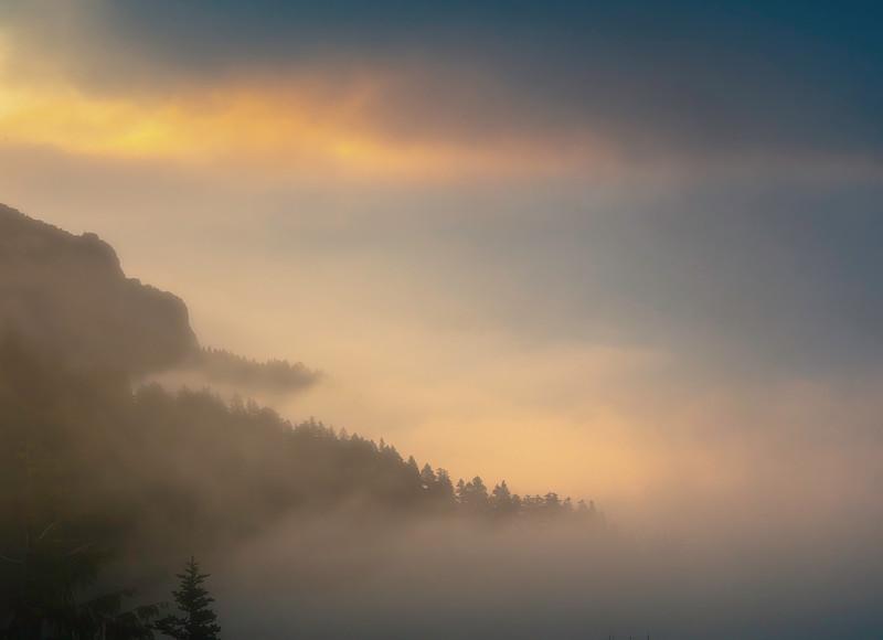 Sunrise Mist Rollng Through The Valley - Hurricane Ridge, Olympic National Park, WA