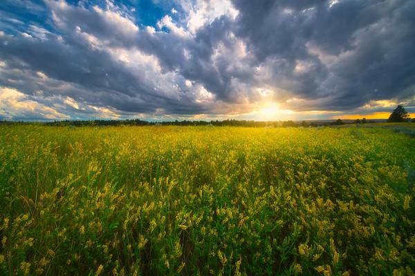 As The Sun Slips Through - Makoshika State Park, Glendive, Eastern Montana