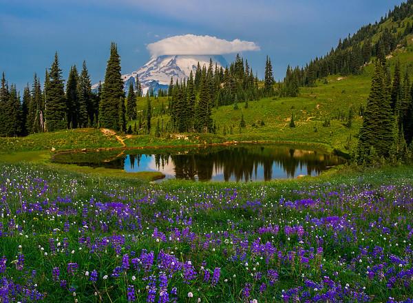 An Undiscovered Tarn - Naches Peak Trail, Mount Rainier National Park, Washington St.