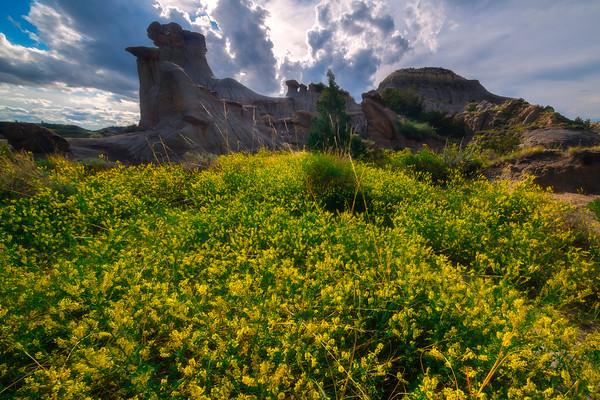 Yellow Fortress - Makoshika State Park, Glendive, Eastern Montana