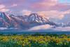 The Tetons Breaking Through - Grand Teton National Park in Wyoming St.