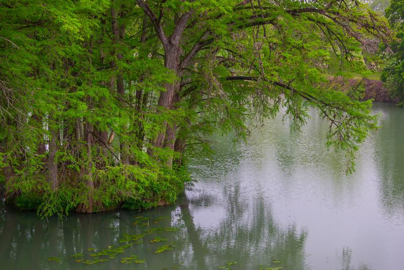 Cypress Tree Island
