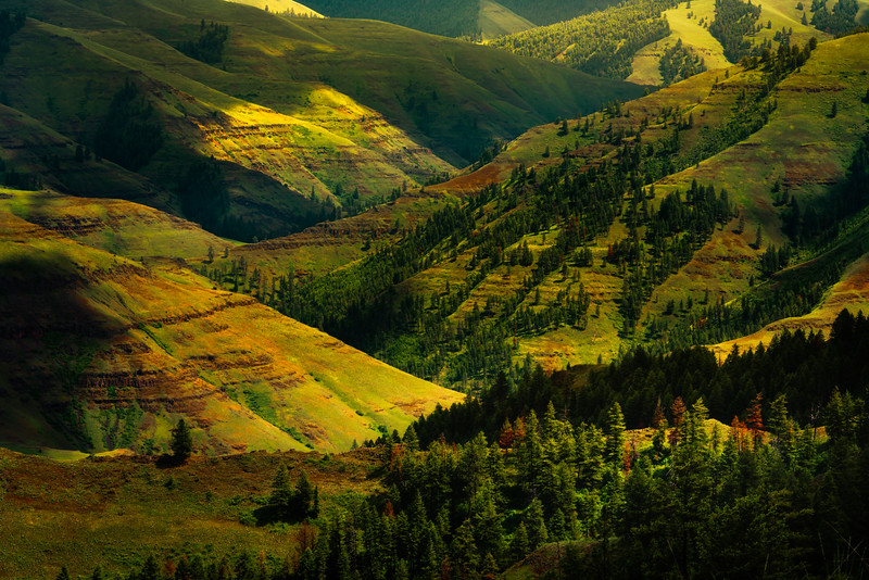 Chief Jospeh Valley In Spring Wallowa County, Oregon