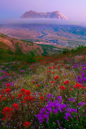 Painted Colors Of Ecstasy - Mount St Helens, Washington