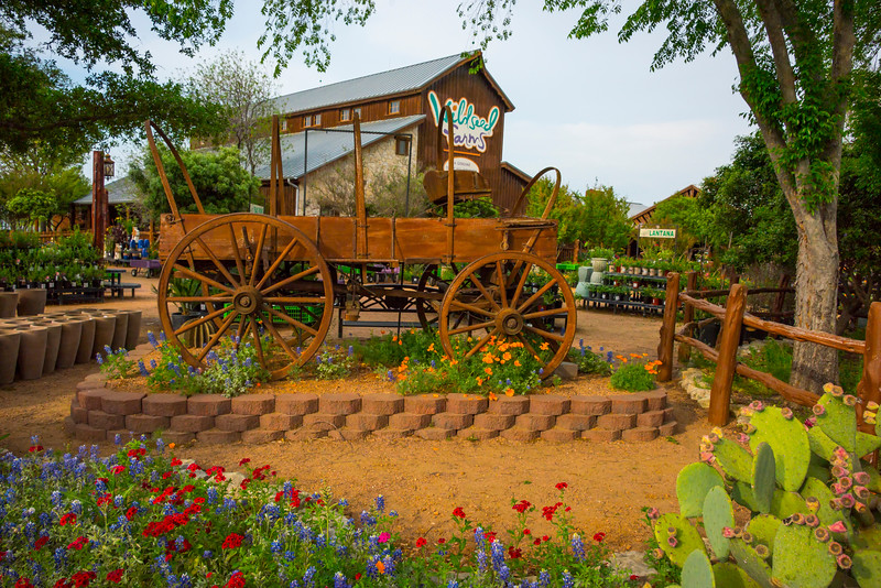 Wildseed Farms Entrance