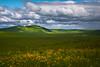 Storm Clouds Brewing On The Zumwalt Prarie Wallowa County, Oregon