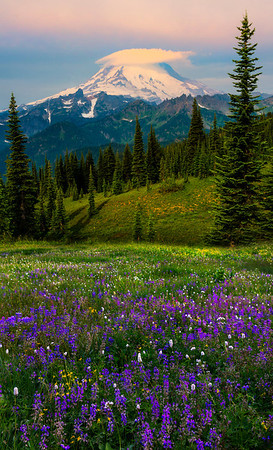 A Halo Above Mount Rainier - Naches Peak Trail, Mount Rainier National Park, Washington St.