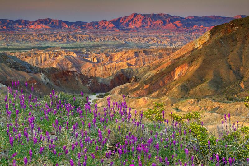 Sunset From Carrizo Plains - Anza-Borrego Desert State Park, California