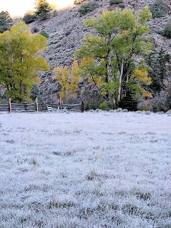 Winter Season (stock)
