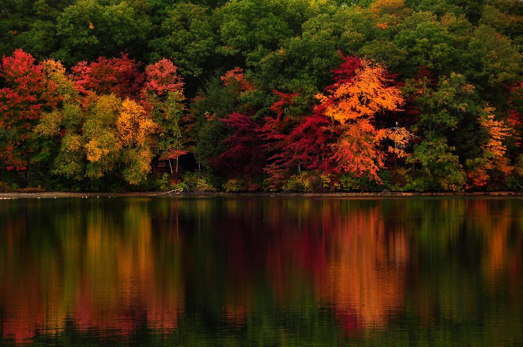 Autumn Reflection, Rhode Island