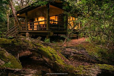 Forest Lodge. Phinda / Munyawana / Zuka Game Reserve.  KwaZulu Natal. South Africa