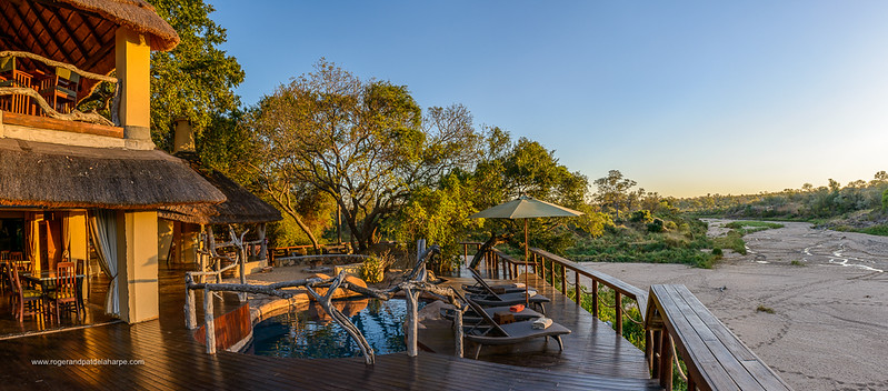 Jock Safari L:odge. Kruger National Park. Mpumalanga. South Africa.
