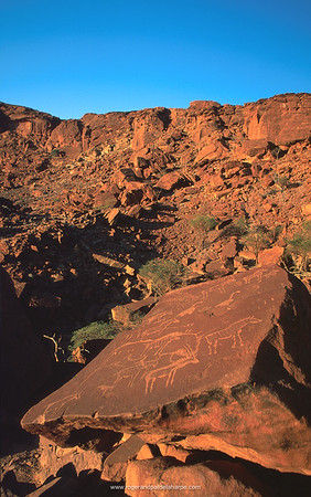San (Bushman) rock engravings