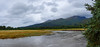 Scenic view Silver Salmon Creek. South Central Alaska. United States of America (USA).
