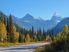 Fall colours along the Trans-Canada Highway near Golden. British Columbia. Canada.