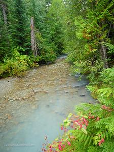 Riverine scene. Whistler. British Columbia. Canada.