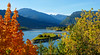 The Columbia River and fall (autumn) colours. Golden. British Columbia. Canada.