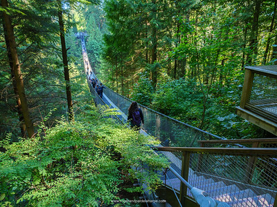 Capilano Suspension Bridge. Capilano Suspension Bridge Park. Vancouver. British Columbia. Canada.
