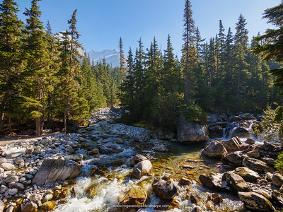 Illecillewaet River at the Meeting of the Waters. Glacier National Park near Golden. British Columbia. Canada.