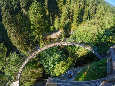 Aerial walkway aling a cliff face at Capilano Suspension Bridge Park. Vancouver. British Columbia. Canada.