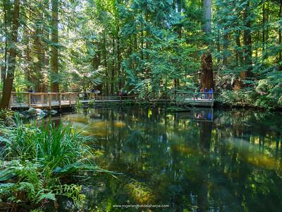 Capilano Suspension Bridge Park. Vancouver. British Columbia. Canada.