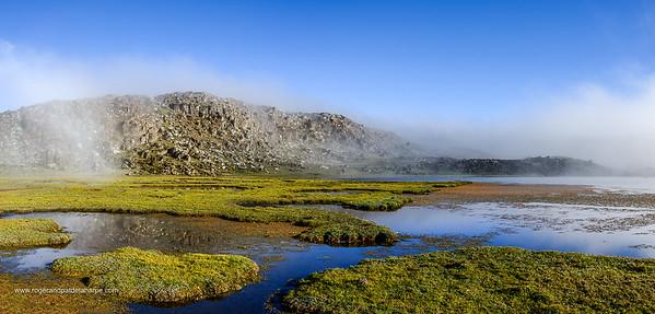 Scenic view. Bale Mountains National Park. Ethiopia.