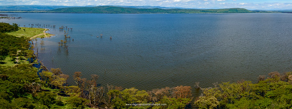 Lake Nakuru. Nakuru. Great Rift Valley. Kenya