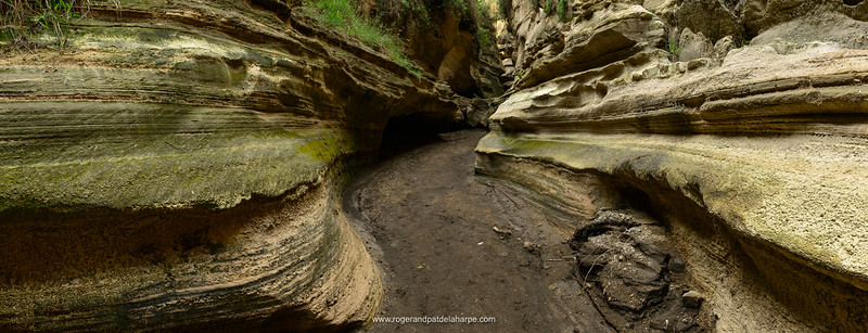 Hell's Gate Gorge (Ol Njorowa) showing water erosion of the sandstone. Hells Gate National Park. Naivasha. Great Rift Valley. Kenya