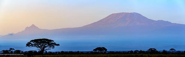 Mount (Mt) Kilimanjaro and Mount (MT)  Mawenzi (in Tanzania) on the left from Satao Elerai Conservancy. Near Amboseli National Park. Kenya.