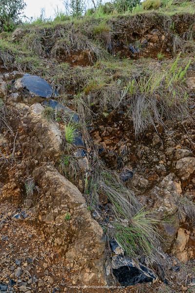 Obsidian intrusion. Naivasha. Great Rift Valley. Kenya