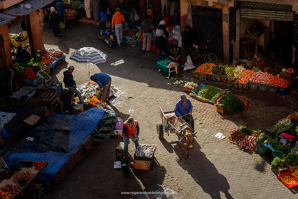 Fruit and vegetables for sale in a Souk. Marrakesh or Marrakech. Morocco