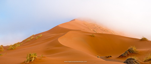 Desert dune and mist (fog) scenery. Sossusvlei. Namib-Naukluft National Park. Near Sesriem. Namibia