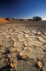 Dried Mud. Near Sossusvlei. Namibia.