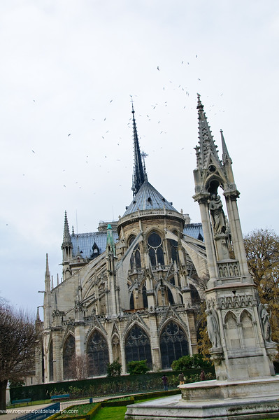 Notre Dame Cathedral on Ile de la Cite or City Island from Jardin Jean XXVIII. Paris. France