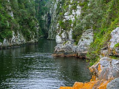 Image Number GH5R362132. The Storms River showing narrow rocky gorge. Garden Route. Eastern Cape. South Africa
