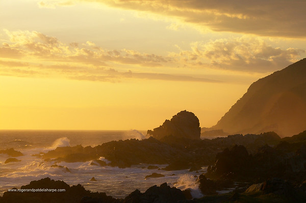 Storms River National Park. Western Cape. South Africa