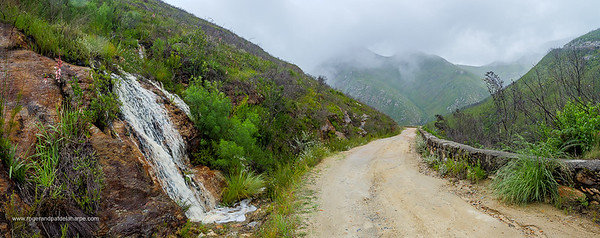 Image Number GH5R362399-Pano. Waterfall on the Montagu Pass crossing the Outeniqua Mountains. George. Garden Route. Western Cape. South Africa