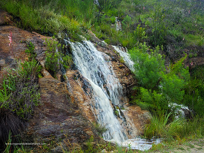 Image Number GH5R362423. Waterfall on the Montagu Pass crossing the Outeniqua Mountains. George. Garden Route. Western Cape. South Africa