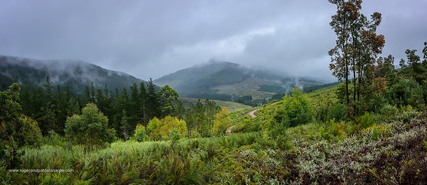 Prince Alfred's (Alfreds) Pass and Langkloof Mountains. Garden Route. Western Cape. South Africa